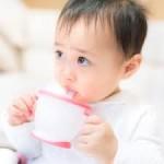 ジカ熱赤ちゃん小頭症
